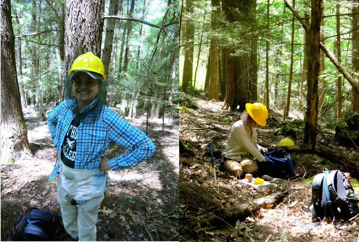[Alison and Audrey prepare for a day of measuring trees by getting on bug gear and organizing data sheets. The hard hats are important in the girdled plots, where slowly dying trees may unexpectedly drop some of their branches.]