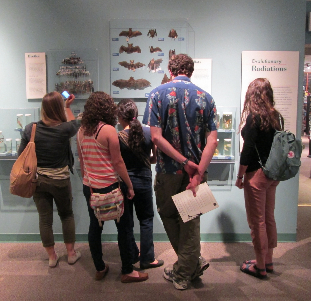 [Summer Program students at the Harvard Museum of Natural History.]