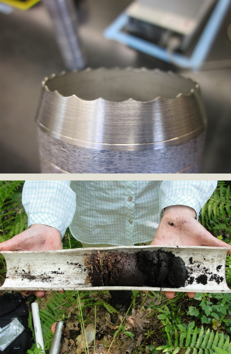 [Above: the serrated edge of the steel cylinder used for taking soil cores; below: a soil core extracted from the cylinder]