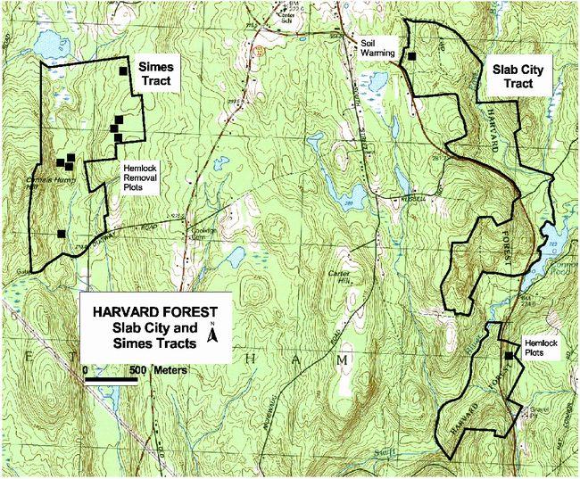 harvard forest experimental site maps harvard forest