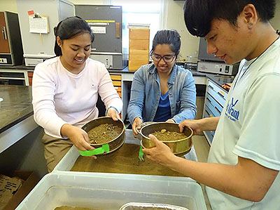 [Jerilyn, Seanne, and I grinding litter and sieving soil for our experiment!]