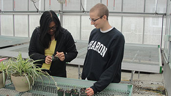 [Jerilyn and I observing growth of sheep's sorrel in greenhouse. Photo by Jill Fusco]