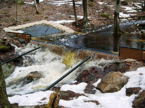 Big Weir in Nelson Brook