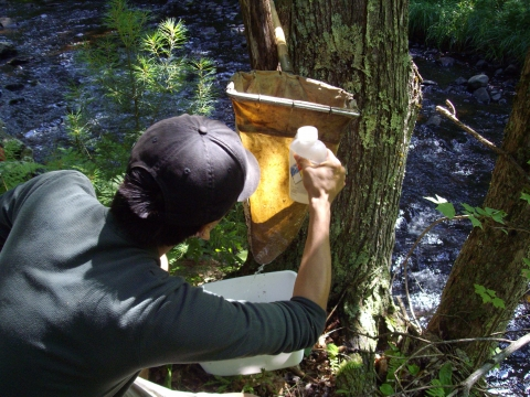 Summer Research Program Student Participates In Hydrology Research