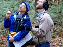 Harvard Forest Ecologist Speaks To NPR Reporter About Carbon Sequestration