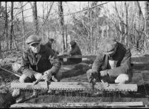 Yale planting board