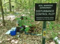 Soil Warming Control Plot