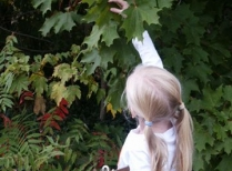 Schoolyard student works on phenology project