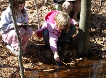 Schoolyard students with vernal pool