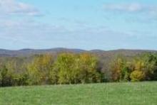 CT Landscape