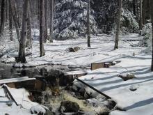 Harvard Forest stream weir