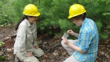 Sydne Record with Summer Student Collecting Ants