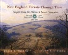 NE Forests Through Time Cover