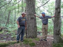 Landowners in the Woods
