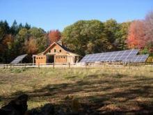 Harvard Forest solar panels