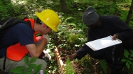 Harvard Forest Summer Research Program students