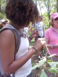 Monica Allende Quiros smells a Sarsparilla Root