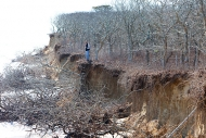 Wasque beach erosion - photo by Rose Lincoln of the Harvard Gazette