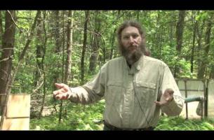 Ants and Climate Change -- Aaron Ellison, Warm Ants