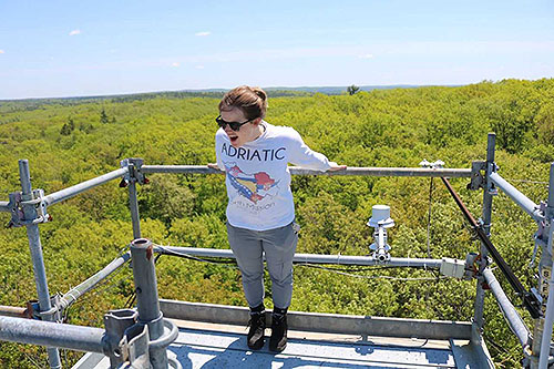[On a walk-up tower examining phenology (aka pretending to fall).]